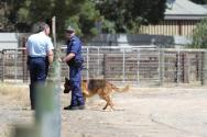 0055-Kapunda murders crimescene