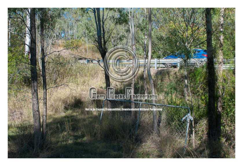 This is to show the proximity of Mt Crosby Rd on this path which cars have clearly driven.  (To my back taking this photo is Little Ugly Creek.  Witness 26 property is in the direction of top left of the photo to give some perspective.