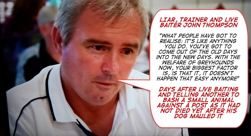 Liar, trainer and live baiter John Thompson