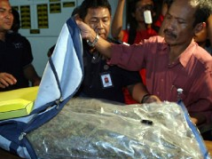 2004_ Schapelle Corby_s infamous boogie board bag with drugs smuggled inside it